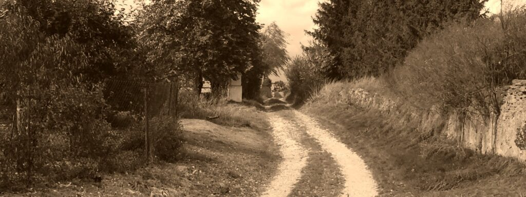 The Old Road to Malý Bor