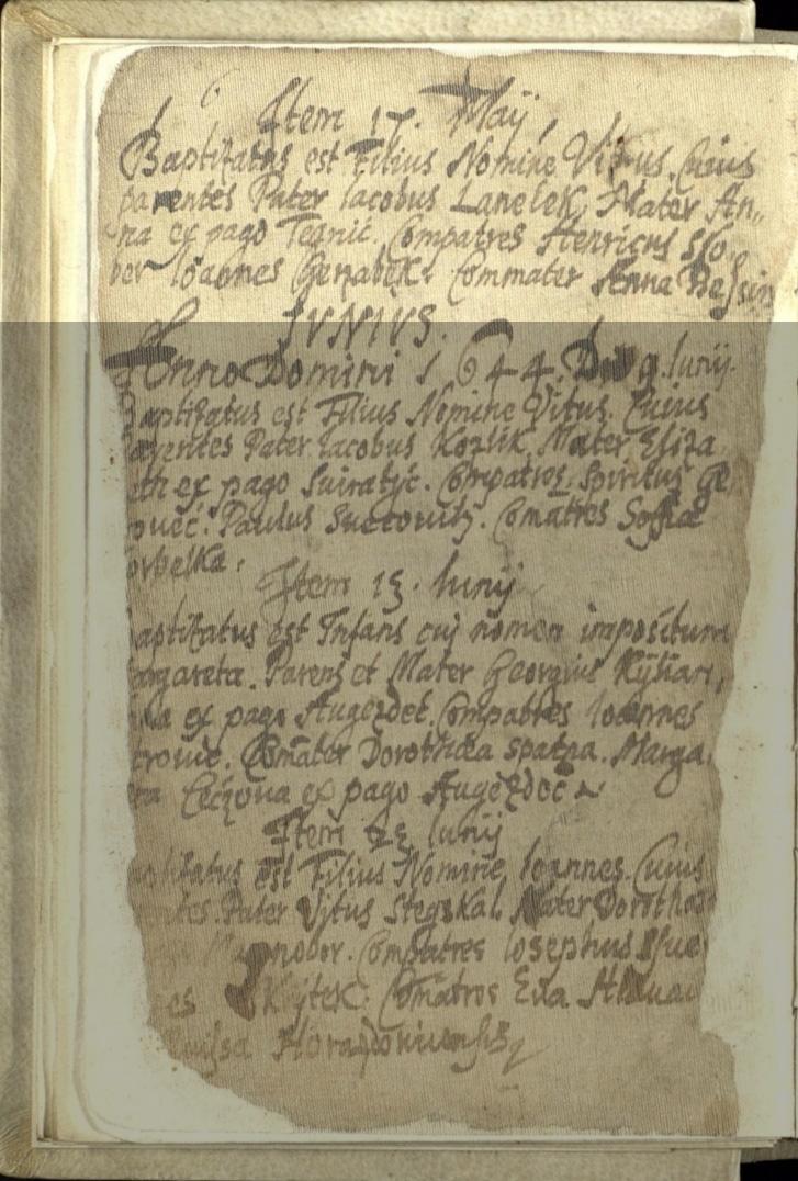Baptism Record of Vit Janeczek